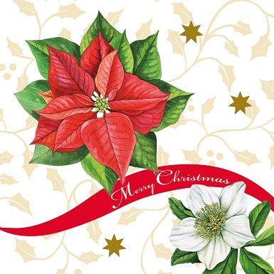 Buntbedruckte Serviette mit einem Bild eines Weihnachtsstern und der Aufschrift Merry Christmas